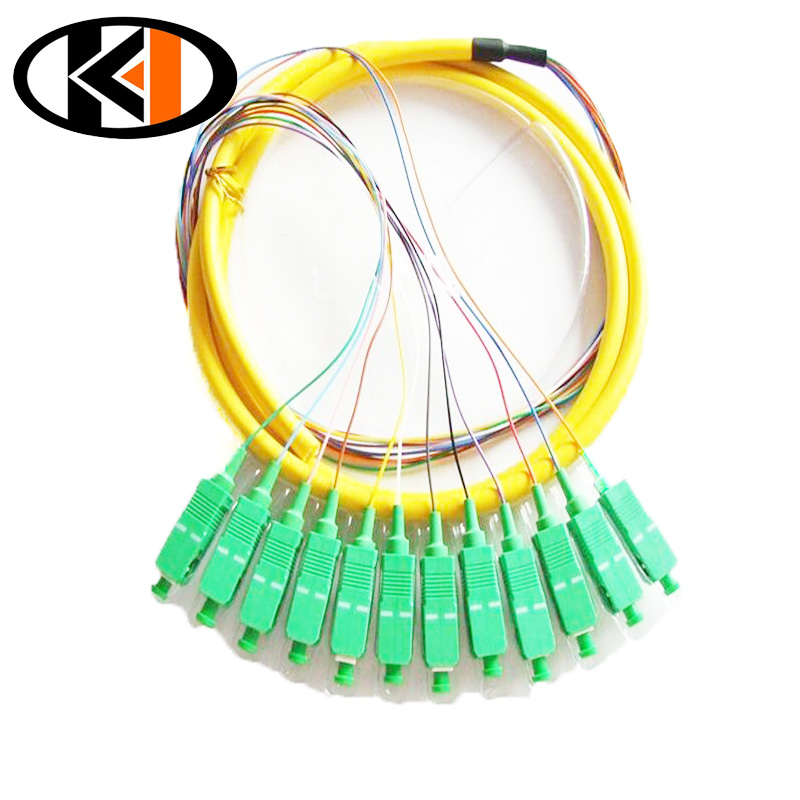 /img / fiber_optic_pigtail_12cords_152030meters_sc_apc_09mm.jpg